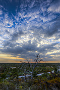 Dickenson Prints - Evening Skies over Florida Print by Debra and Dave Vanderlaan