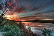Tam Ryan - Evening Sky