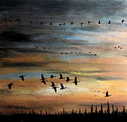 Canadian Geese Pastels - Evening Time to Fly by R Kyllo