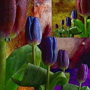 Purple Prints - Ever Lasting Tulips Print by Wobblymol Davis