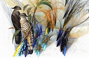 Hawks Mixed Media - Everglades by Madeline  Allen - SmudgeArt