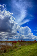 Swank Photography - Everglades Sky