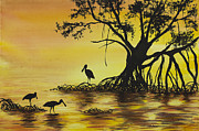 Barb Capeletti - Everglades Sunrise