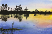 Barb Capeletti - Everglades Sunset Heron