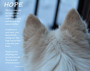 Fiona Kennard - Every Dog Has Hope