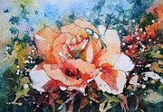 Stephie Butler Prints - Everythings Peachy . . . Peach Rose Print by Stephie Butler