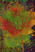 Red Leaf Mixed Media Posters - Evolution of Life Poster by Deborah Benoit