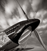 P51 Mustang Posters - Excalibur Poster by James Howe
