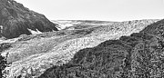 Chuck Kuhn - Exit Glaciers I