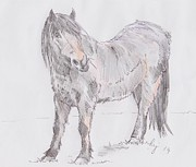 Mike Jory - Exmoor Pony
