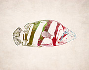 Animal Drawing Posters - Exotic Fish Drawing Poster by World Art Prints And Designs