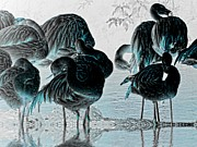 Flamingoes Art - Exotic Flamingos by Sharon Lisa Clarke