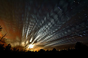Passing Digital Art - Extraterrestrial Spider Web by Matt Molloy