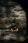Eye Posters - Eye In Brick Wall Poster by Christopher and Amanda Elwell