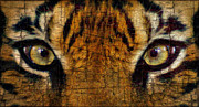 Alter Ego Framed Prints - Eye Of A Tiger 2 Framed Print by Ben Yassa