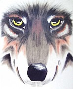 Pack Animal Drawings Posters - Eyes of the Wolf 3 Poster by Deborah Ross