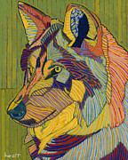 Timber Wolf Prints - Eyes on Santa Fe Print by David  Hearn
