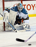 San Jose Sharks Posters - Eyes On The Prize  Antti Niemi Poster by Don Olea