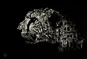 Cheetah Drawings Framed Prints - Eyes on the Prize Framed Print by Nathan Cole
