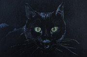 Cat Pastels - Eyes by Robert Stokes