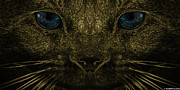 Kittens Digital Art - Eyes That Mesmerize by Anthony Scarpace