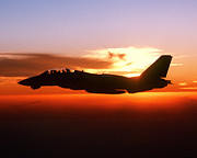 Iraq Posters Framed Prints - F-14A Tomcat aircraft is silhouetted against the sun while in-fl Framed Print by Amy Denson