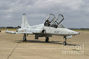 Spanish Air Force Prints - F-5 Tiger Ii Used As A Lead-in Trainer Print by Timm Ziegenthaler