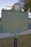 Pasco County Prints - F-56 Pasco County Print by Jason O Watson