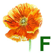 Kids Room Posters - F Stands for Flower Art Alphabet for Kids Room Poster by Irina Sztukowski