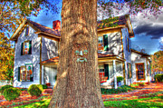 Andy Lawless - Face in the tree HDR
