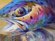 Rainbow Posters - Face of A Rainbow- Rainbow Trout Portrait Poster by Mike Savlen