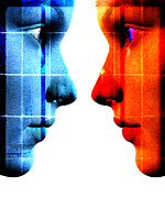 Two Faces Posters - Face To Face Poster by David Ridley