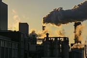 Patricia Hofmeester - Factory fumes