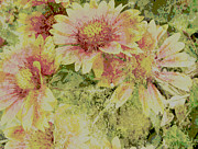 Manipulated Photography Posters - Faded Love abstract floral art Poster by Ann Powell