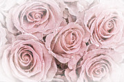 Retro Antique Art - Faded roses by Jane Rix