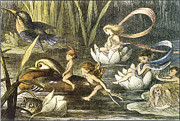 Fairies Posters - Fairies and Water Lilies Circa 1870 Poster by Richard Doyle