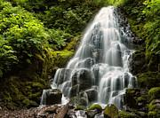 Brian Bonham - Fairy Falls