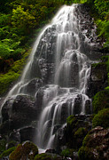 Tim Moore Metal Prints - Fairy Falls Metal Print by Tim Moore