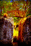 Tropical Dreams Posters - Fairytale Bridge Poster by Karen Wiles
