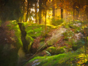 Fairytale Forest Print by Lutz Baar