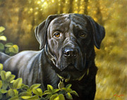 Pastel Dog Paintings - Faithful friend by John Silver