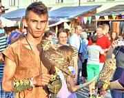 Ion vincent DAnu - Falcon and Falconer