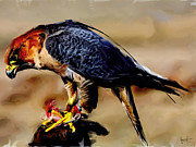 Feeding Mixed Media - Falcon feeding by Bruce Parker