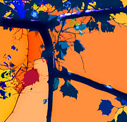 Fall Digital Art Originals - Fall Abstraction 5-2013 by John Lautermilch