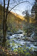 Debra and Dave Vanderlaan - Fall along Citico Creek