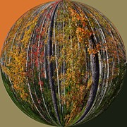 Photos Of Autumn Prints - Fall Art Deco Print by Scott Cameron