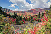 Mixed Media Photos - Fall At Snowbasin Utah by James Steele