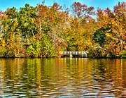 Nick Zelinsky - Fall at the lake