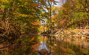 Fall At Valley Creek  Print by Rima Biswas
