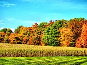 Changing Of The Seasons Prints - Fall-Autumn On The Farm Print by Dan Sproul